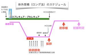 体外受精のスケジュール